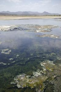 Lake Magadi, Kenya