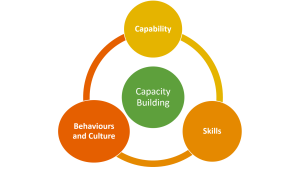 Thamani Community Capacity Building Framework