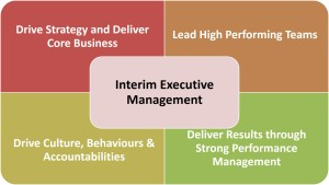 Interim Executive Management Model